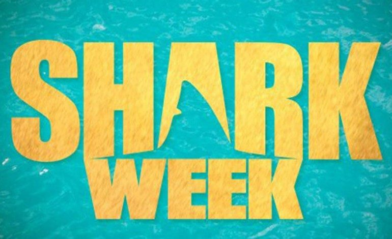 Discovery's Shark Week Schedule Promises No Gimmicks
