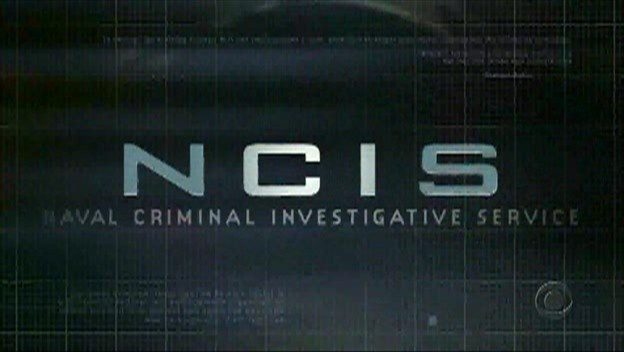 'NCIS: Hawaii' Casts Noah Mills