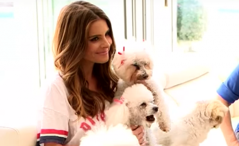 """Maria Menounos Says """"I'm Recovering Well"""" After Brain Tumor Surgery"""