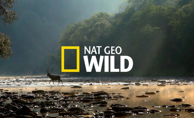 Nat Geo Docuseries 'Dead By Dawn' Releases Teaser