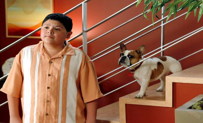 'Modern Family' French Bulldog Dies Following Series Wrap