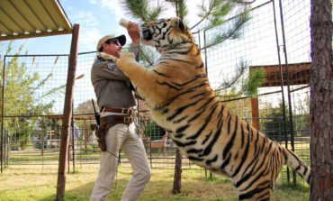 Netflix Releases 'Tiger King' Documentary First Trailer